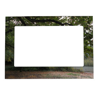 Trees and nature magnetic photo frame