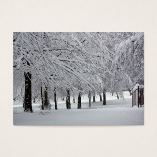 trees and snow business card