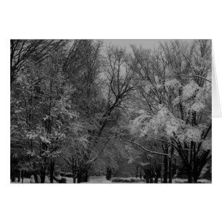 """""""trees and snow"""" by Larry Coressel Card"""