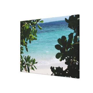 Trees and the sea canvas print