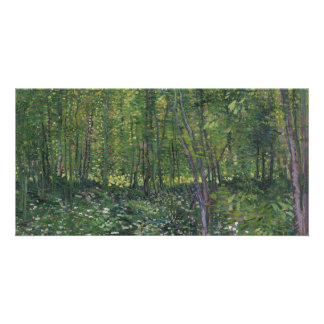 Trees and Undergrowth by Vincent Van Gogh Card