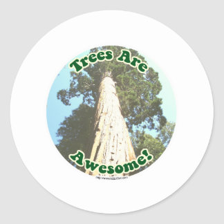Trees are Awesome! Classic Round Sticker