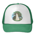 Trees are Awesome! Trucker Hats
