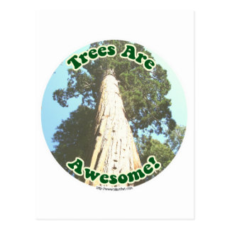 Trees are So Awesome! Postcard