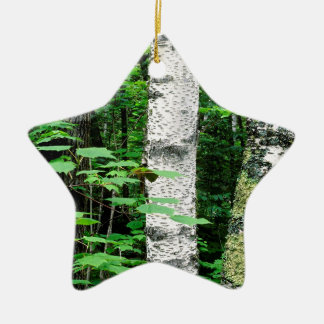 Trees Aspen Trunks Quetico Ontario Canada Ceramic Ornament