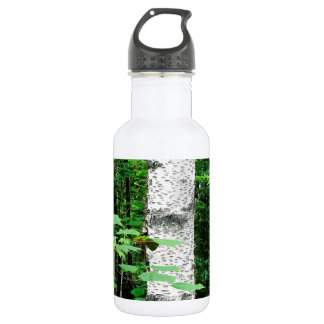 Trees Aspen Trunks Quetico Ontario Canada Stainless Steel Water Bottle