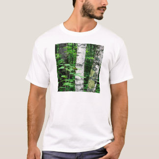 Trees Aspen Trunks Quetico Ontario Canada T-Shirt