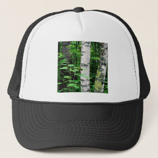 Trees Aspen Trunks Quetico Ontario Canada Trucker Hat