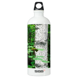 Trees Aspen Trunks Quetico Ontario Canada Water Bottle