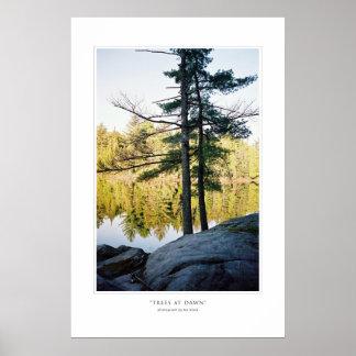 Trees At Dawn Print