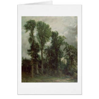 Trees at Hampstead Card