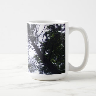 Trees at Roan Mountain State Park in Tennessee mug
