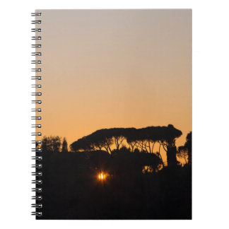 Trees at sunset in backlight in Rome Spiral Notebook