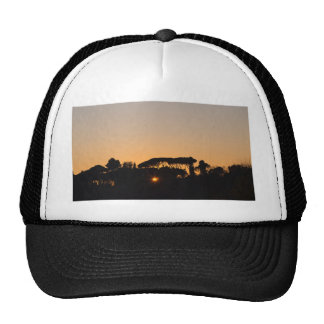 Trees at sunset in backlight in Rome Trucker Hat