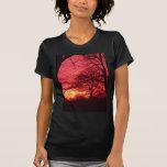 Trees at Sunset Shirt