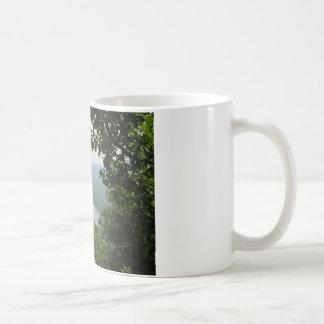 Trees at Wyalusing State Park - Bridge Down Below Coffee Mug