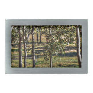TREES AUSTRALIAN BUSH RURAL QUEENSLAND AUSTRALIA BELT BUCKLE