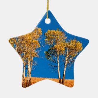 Trees Autumn Aspen Yellowstone Wyoming Double-Sided Star Ceramic Christmas Ornament