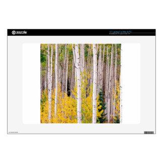 "Trees Autumn Aspens Colorado 15"" Laptop Skin"