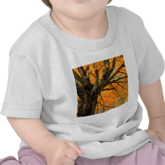 Trees Autumn Maple Bass Lake Shirt