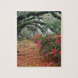 Trees Azaleas Oaks Magnolia Charleston Jigsaw Puzzle