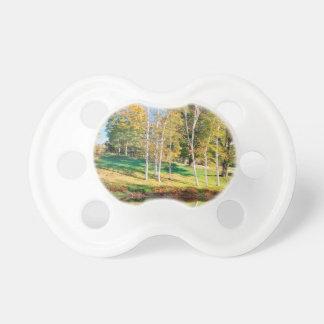 Trees Birch Vermont Pacifier