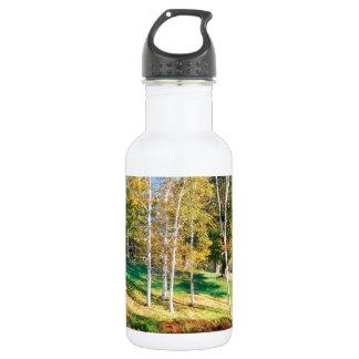 Trees Birch Vermont Stainless Steel Water Bottle