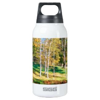 Trees Birch Vermont Thermos Bottle