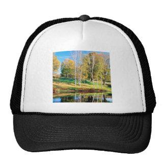 Trees Birch Vermont Trucker Hat