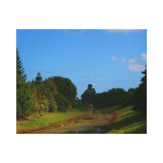 Trees blue sky small stream photograph in Florida Stretched Canvas Print