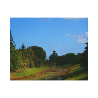 Trees blue sky small stream photograph in Florida Gallery Wrapped Canvas