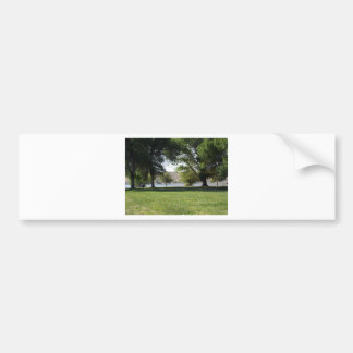 Trees by the Lake with Lawn Bumper Sticker