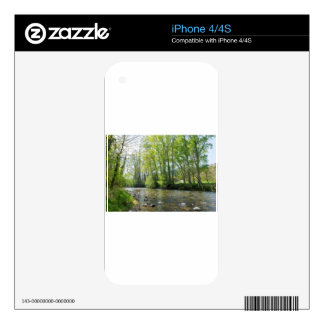 Trees by to river in Cantabria Decal For The iPhone 4S