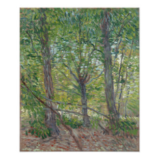Trees by Vincent Van Gogh Photo Print