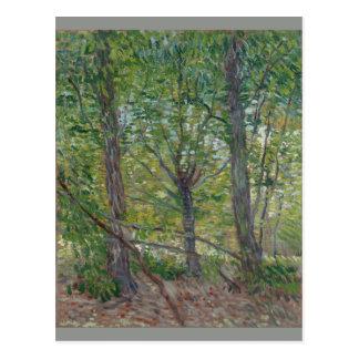 Trees by Vincent Van Gogh Postcard
