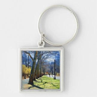 Trees Central Park NY Keychains