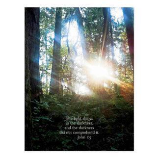 Trees Christian Bible Verse Scripture Creationarts Postcard