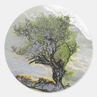 TREES CLASSIC ROUND STICKER