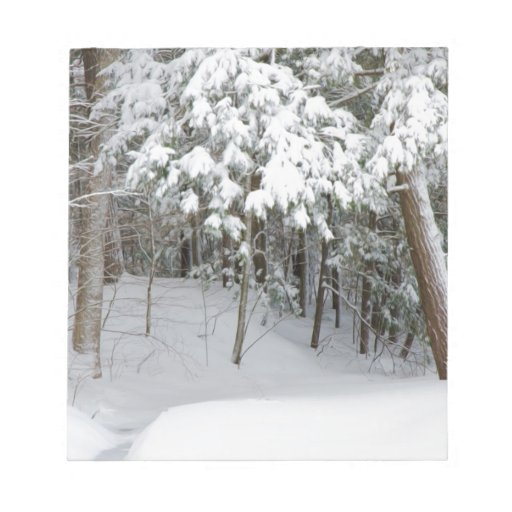 Trees covered in heavy snow memo notepads