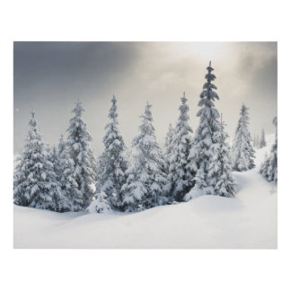 Trees Covered With Hoarfrost And Snow Panel Wall Art