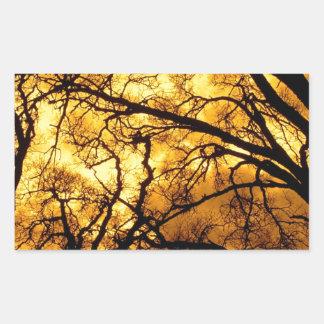 Trees Devils Sky Mount Diablo Rectangular Sticker