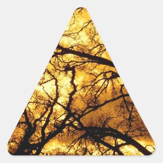 Trees Devils Sky Mount Diablo Triangle Sticker