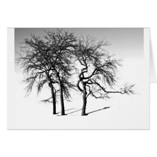 Trees/Edward Wallace quote Card