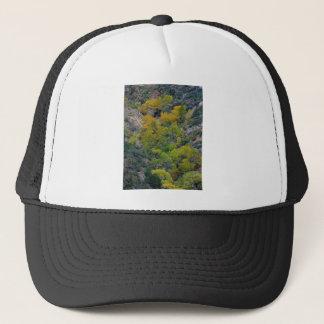 TREES FALL AUTUMN TRUCKER HAT