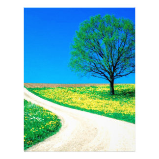 Trees Flowers Spring Road Letterhead Template