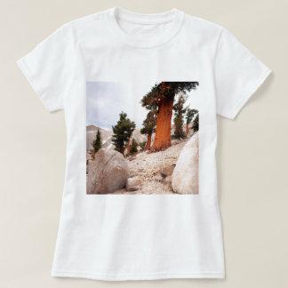 Trees Fox Tail Pine Eastern Sierra Nevada T-Shirt