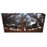 Trees Gallery Wrap Canvas