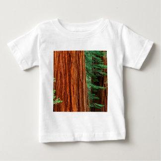 Trees Giant Sequoia Mariposa Grove Yosemite Tee Shirts