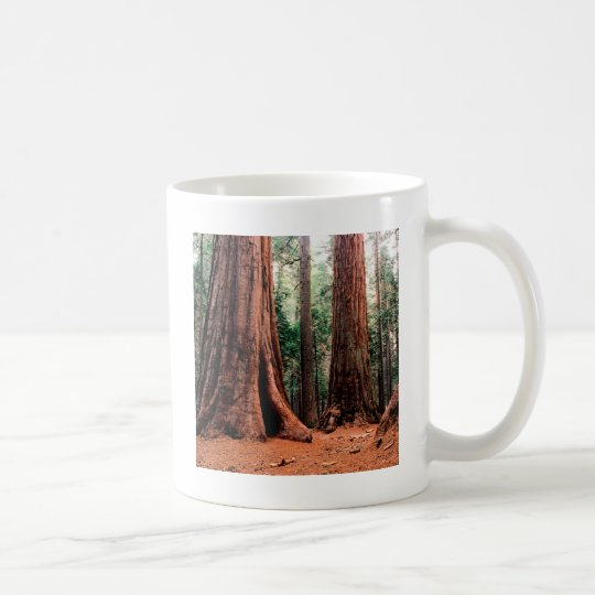 Trees Giants Calaveras Coffee Mug