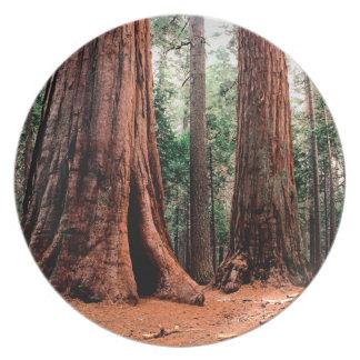 Trees Giants Calaveras Dinner Plate